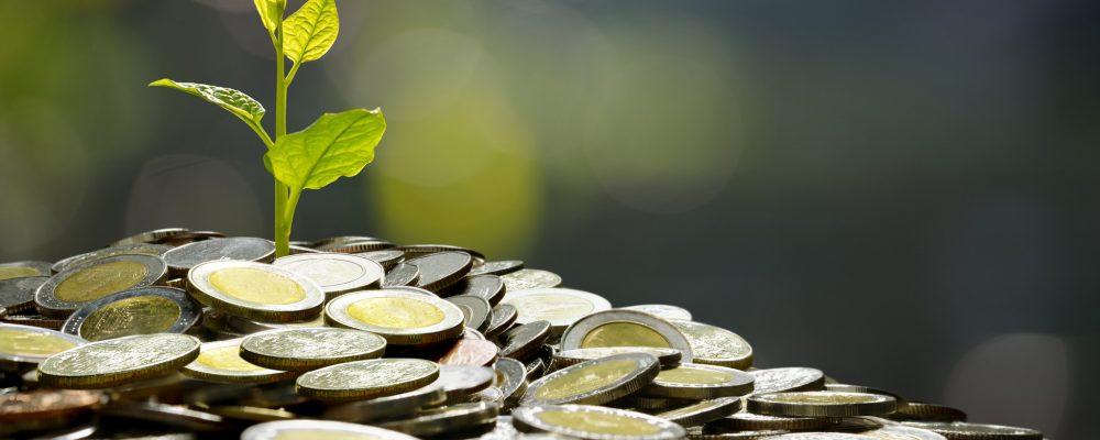 business-saving-growth-economic-concept-PNJSM3S
